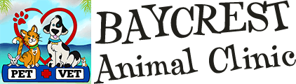 Baycrest Animal Clinic Home